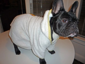 bathrobe modeled by Beetle