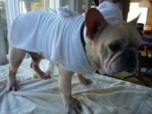 bathrobe modeled by Tough Guy